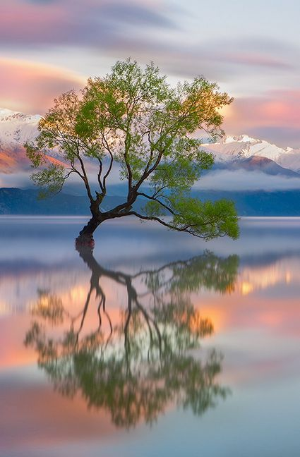 500px / Lake Wanaka by Karen Plimmer