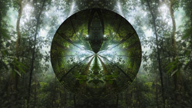treecircle_1280
