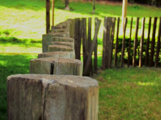 wood-645463_1280