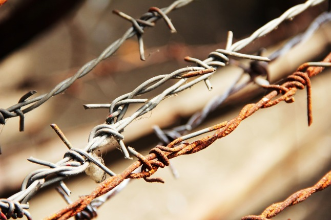 barbed-wire-1559696_1280