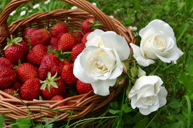 plant-fruits
