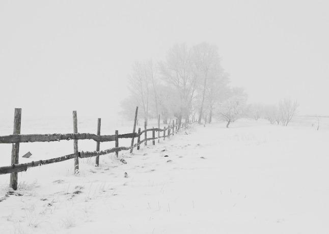 Season-winter