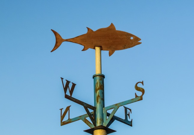 directions-weather vane-1280