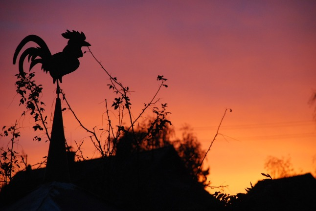 weather-vane-2214767_1280